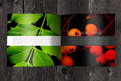 Marketing Brochure Sample - Drygas