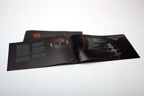 Brochure Design 10