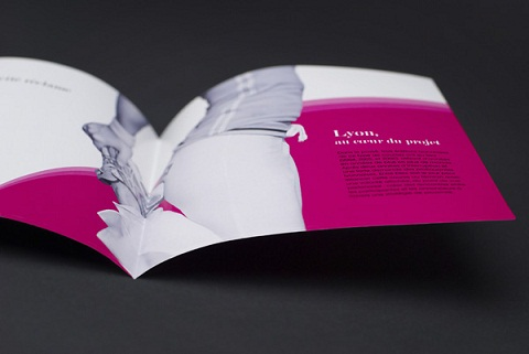 Brochure Design 49