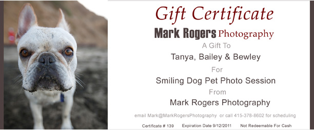 Photography Gift Certificate Wording  BesikEightyCo