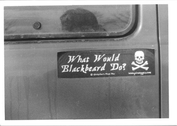 Car Sticker Art 17